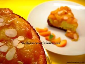 cheesecake di ricotta con composta di albicocche al miele