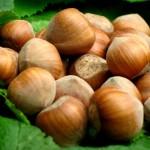 Piedmont hazelnuts Igp
